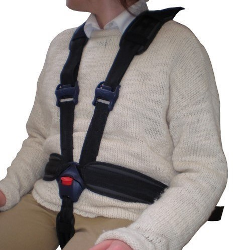 5 Point Harness - Promobility